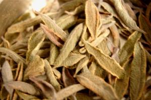 Fig. 3: Tasty dried sage!